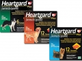 Heartgard_Plus_large