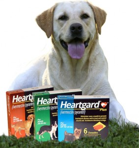 Heartgard For Dogs